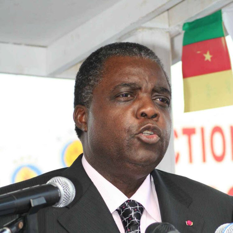 The Minister of Communication, René Emmanuel Sadi has denied the claims made by the United States on the Cameroonian resistance and security powers on human rights infringement.